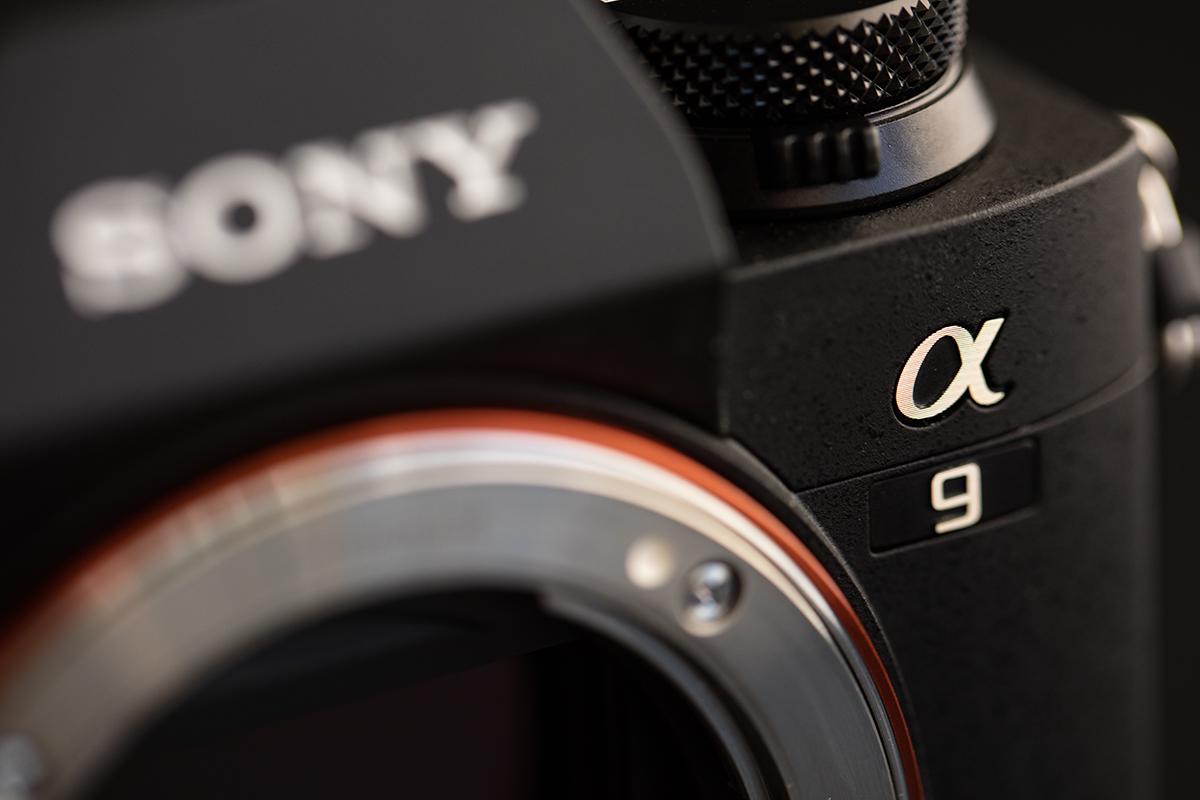 Sony a9 Example Photos