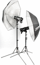 Profoto D2 500/500 AirTTL 2-Light Kit